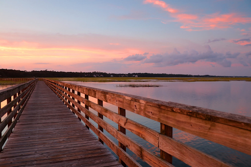 Discover the Best State Parks in SC near Murrells Inlet